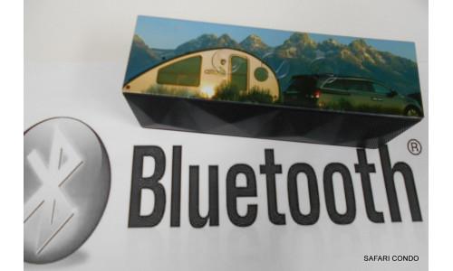 Bluetooth Speaker **LIMITED EDITION** 1713 / 1723